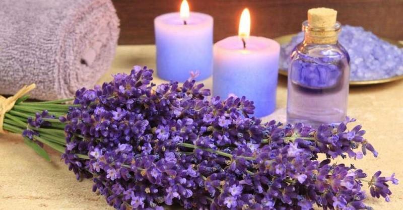 Nến thơm Lavender giúp giấc ngủ sâu hơn