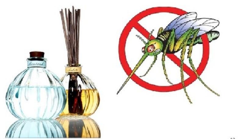 tinh dầu tốt cho cơ thể giúp xua đuổi côn trùng