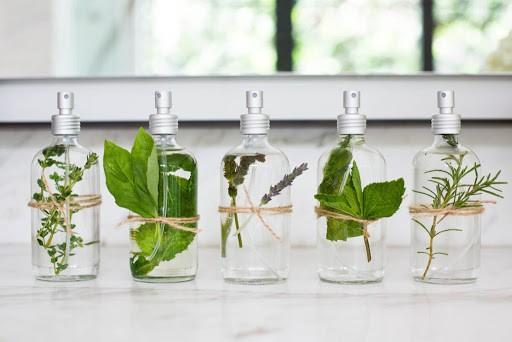 sự khác biệt ấn tượng từ tinh dầu xua đuổi côn trùng