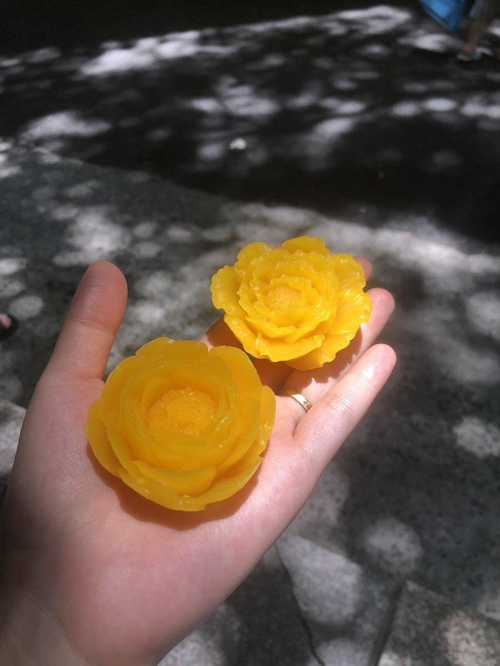 mang tới sự trải nghiệm khác biệt từ bông hoa nến sáp ong